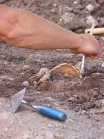 Ausgrabung auf der Burg Querfurt